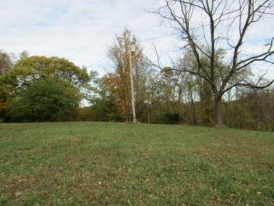 78.62AC OLD MILL HILL ROAD, Dowelltown, TN 37059 - Photo 2
