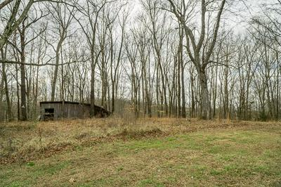 90 ACRES WILLOW GROVE HWY, ALLONS, TN 38541 - Photo 2