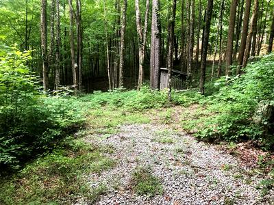 1499 KING MOUNTAIN RD, Jamestown, TN 38556 - Photo 2