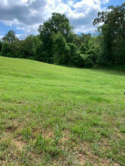 00 SE SIMMONS CEMETERY RD, QUEBECK, TN 38579 - Photo 2