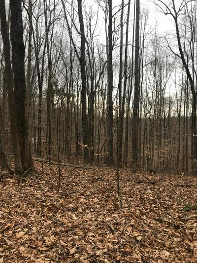 4 ACRES LOT 1 RICH LAKEVIEW ACRES, MONROE, TN 38573 - Photo 1