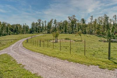 9575 ROBERTS RD, Silver Point, TN 38582 - Photo 2