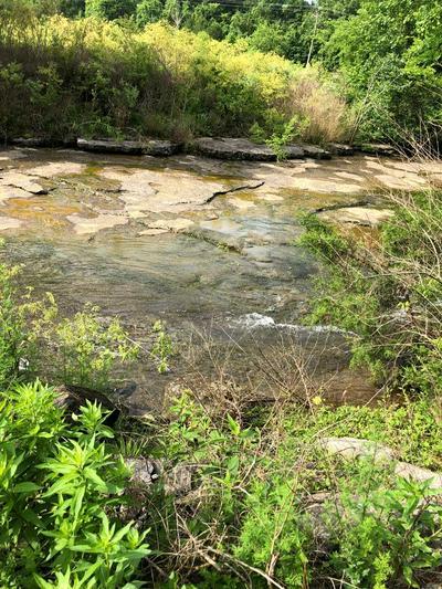 1319 HICKMAN RD, HICKMAN, TN 38567 - Photo 2