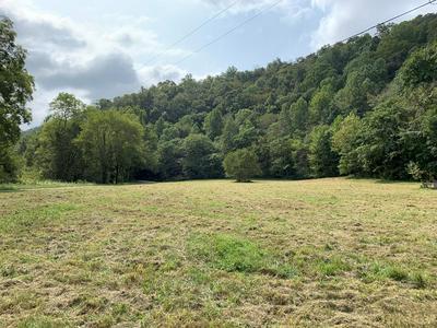 1427 PINE LICK RD, WHITLEYVILLE, TN 38588 - Photo 2