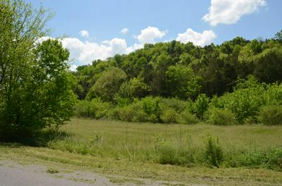 0 HOPKINS HOLLOW ROAD, GAINESBORO, TN 38562 - Photo 2
