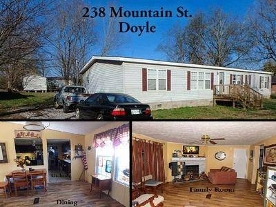 238 MOUNTAIN ST, DOYLE, TN 38559 - Photo 1