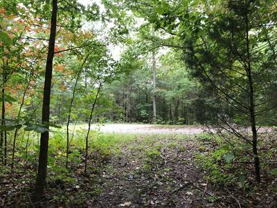 8+/- AC RED BUD LANE, Byrdstown, TN 38549 - Photo 2