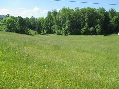 000 SIMMONS CEMETERY RD, QUEBECK, TN 38579 - Photo 2