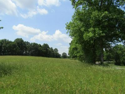 5 AC HILHAM HIGHWAY, Hilham, TN 38568 - Photo 2