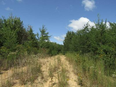 104.55AC BRUSH CREEK ROAD, Pikeville, TN 37367 - Photo 2