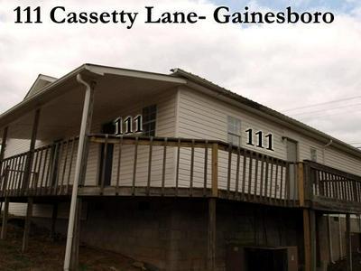 111 CASSETTY LN, GAINESBORO, TN 38562 - Photo 1