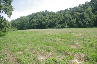 670 ELLIS HOLLOW LN, Dixon Springs, TN 37057 - Photo 1