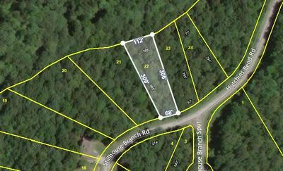 22 STILLHOUSE BRANCH RD, SPARTA, TN 38583 - Photo 1