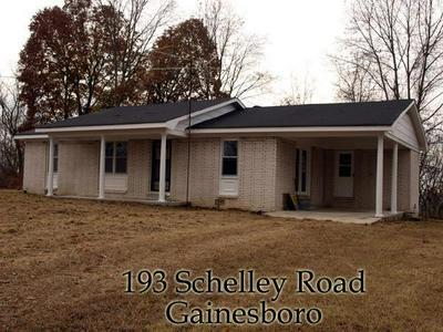 193 SCHELLEY RD, GAINESBORO, TN 38562 - Photo 1