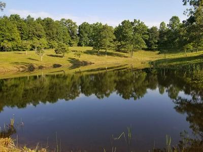 120 GROVES RD, Spencer, TN 38585 - Photo 1