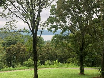 1.42AC EAGLE MOUNTAIN RD., GRANVILLE, TN 38564 - Photo 2