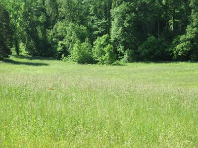 000 SIMMONS CEMETERY RD, QUEBECK, TN 38579 - Photo 1