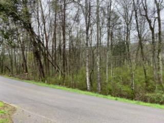 0 OLD DUNLAP RD, WHITWELL, TN 37397 - Photo 1