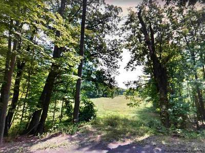 TBD CHURCHLAND ROAD, Saugerties, NY 12477 - Photo 2