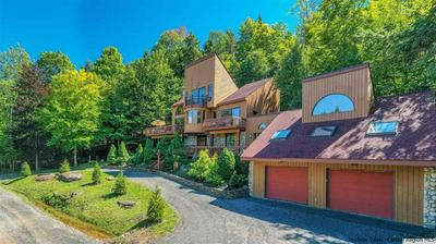 3 LOOPS END, Windham, NY 12496 - Photo 1