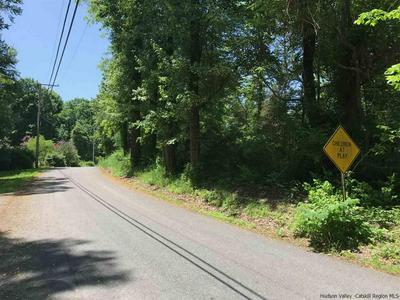TBD GRIST MILL ROAD, Tillson, NY 12472 - Photo 2