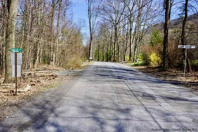 562 COLDBROOK RD, Bearsville, NY 12409 - Photo 2