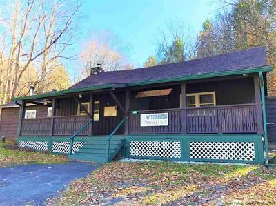 491 GLENFORD WITTENBERG RD, Bearsville, NY 12409 - Photo 1