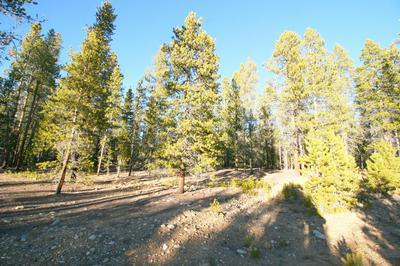 1099 COUNTY ROAD 4, Leadville, CO 80461 - Photo 2