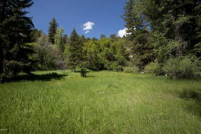 4730 SWEETWATER RD, Gypsum, CO 81637 - Photo 2