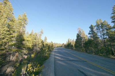 699 COUNTY ROAD 4, Leadville, CO 80461 - Photo 1
