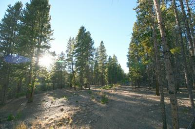 699 COUNTY ROAD 4, Leadville, CO 80461 - Photo 2