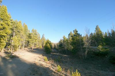 1099 COUNTY ROAD 4, Leadville, CO 80461 - Photo 1