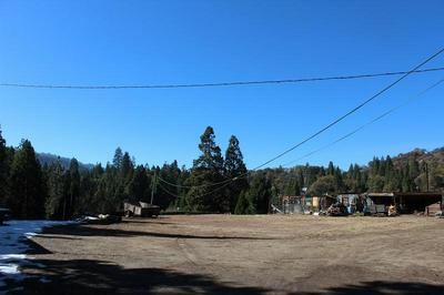 0 NELSON DRIVE, Camp Nelson, CA 93265 - Photo 2