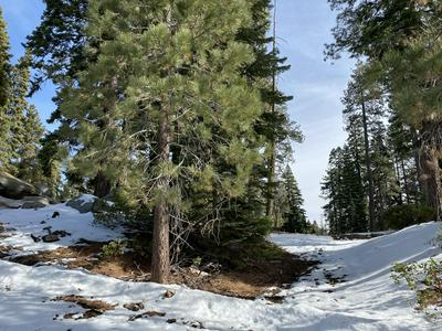 57967 SUMMIT DR, Springville, CA 93265 - Photo 1