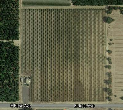 11434 E ROSE AVE, Selma, CA 93662 - Photo 1