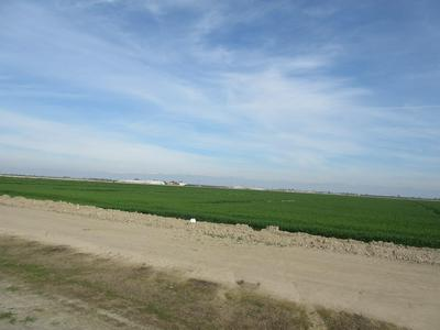 AVENUE 104, Pixley, CA 93256 - Photo 1