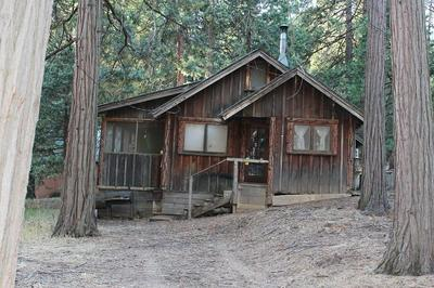 501 LINDER DR, Camp Nelson, CA 93265 - Photo 1
