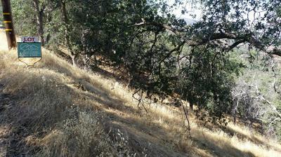 MINERAL KING ROAD, Three Rivers, CA 93271 - Photo 1