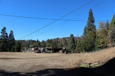 0 NELSON DRIVE, Camp Nelson, CA 93265 - Photo 1
