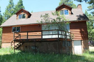 52954 ALPINE DR, Alpine Village, CA 93265 - Photo 2