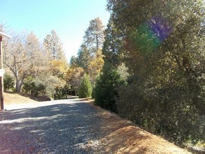 1210 PINE HAVEN CT, Camp Nelson, CA 93265 - Photo 2