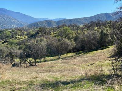 41141 BLUE OAK DR, Springville, CA 93265 - Photo 1