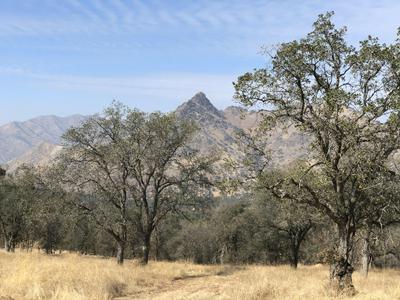 0 BUCKHORN TRAIL, Three Rivers, CA 93271 - Photo 1
