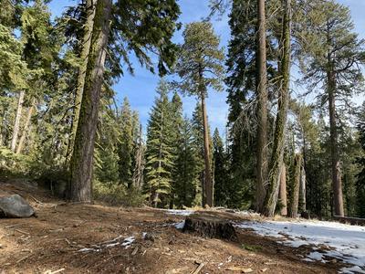 57967 SUMMIT DR, Springville, CA 93265 - Photo 2