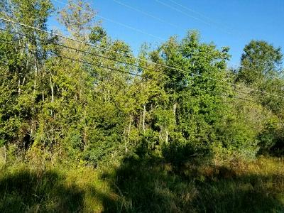 LOT ANDERSON ROAD, Nashville, GA 31639 - Photo 1