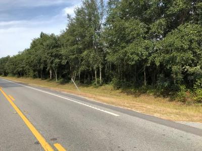 595 W HIGHWAY 168, Lakeland, GA 31635 - Photo 2