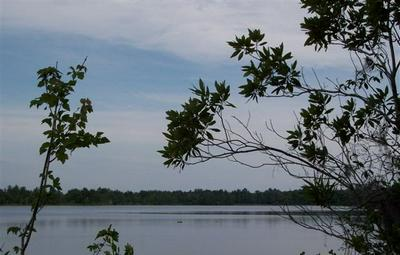 LOT #13 LAKE ALAPAHA, NAYLOR, GA 31641 - Photo 1