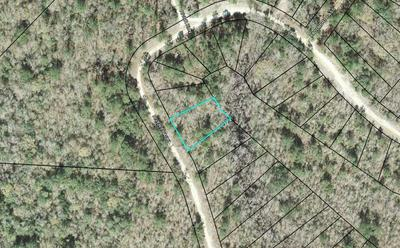 LOT 82 A RIVER TRAILS, Naylor, GA 31641 - Photo 1