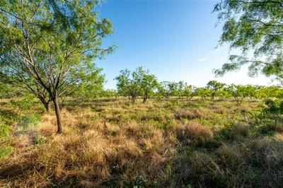 101.8+/- ACRES LCR 116, Axtell, TX 76624 - Photo 1
