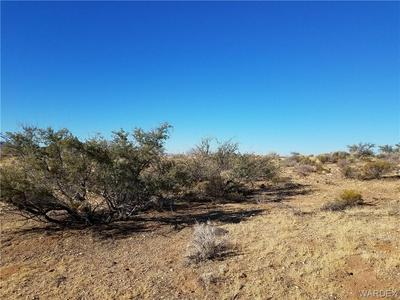 LOT 9 AGULHUS DRIVE, Chloride, AZ 86431 - Photo 2